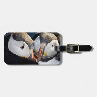 El frailecillo atlántico, un ave marina pelágica,  etiquetas maletas