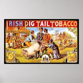 El fumar irlandés del vintage del tabaco de la col poster