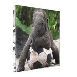 El fútbol del elefante envolvió la impresión de la impresión en lona