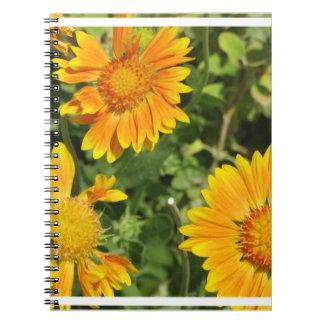 El Gaillardia florece el cuaderno