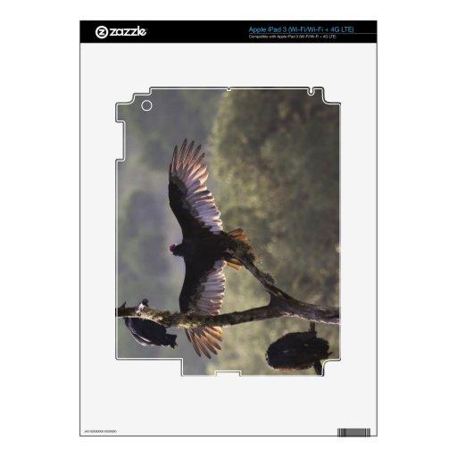 El gallinero cerca de permeable, Tejas de los halc iPad 3 Skin