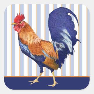 El gallo raya al pegatina cuadrado