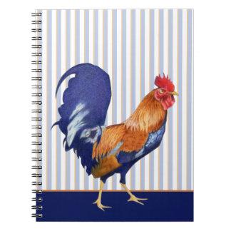 El gallo raya el cuaderno