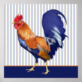 El gallo raya el poster póster
