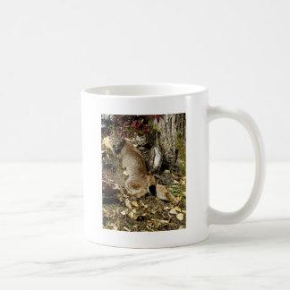 El gandulear siberiano del lince tazas de café