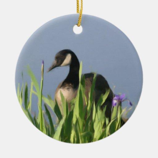 El ganso de Canadá irisa el ornamento animal Ornatos