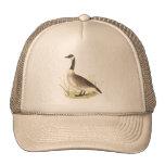 El ganso salvaje(canadensis del Anser) Gorra
