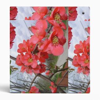 el gardenia de la carpeta florece amor