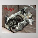 El gatito abraza el poster