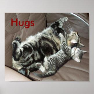 El gatito abraza el poster póster