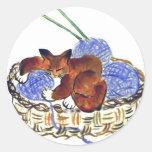 El gatito abraza una almohada del hilado etiqueta redonda