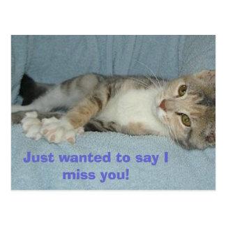 ¡el gatito, acaba de querer decir que le falto! postales