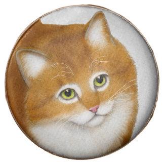 El gatito anaranjado amistoso del Tabby sumergió