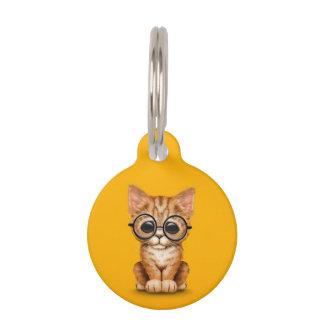 El gatito anaranjado lindo del Tabby con los vidri
