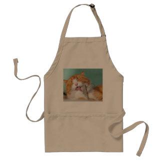 El gatito anaranjado se lame delantal