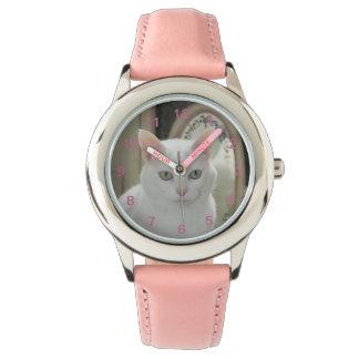 El gatito bonito real relojes