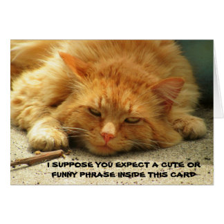 El gatito cansado quisiera que usted acabara su tarjeta de felicitación