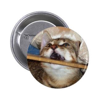 El gatito Chomp el botón Pin Redondo De 2 Pulgadas