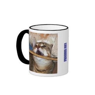 El gatito Chomp la taza
