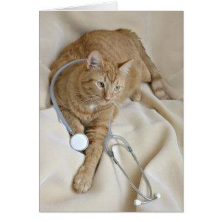 El gatito consigue la tarjeta bien