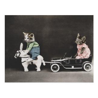 El gatito de la avería postal