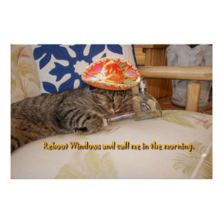 El gatito de la puntada fija Windows Posters