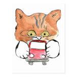 El gatito de Roxy ase un pequeño coche rojo Postales