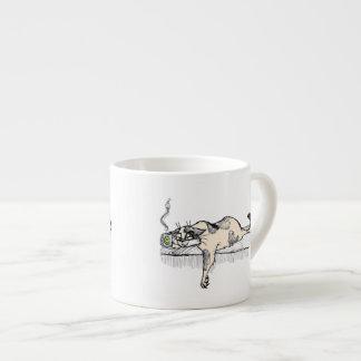 """¡El gatito del café no es un *ahem* """"persona"""" del  Tazitas Espresso"""