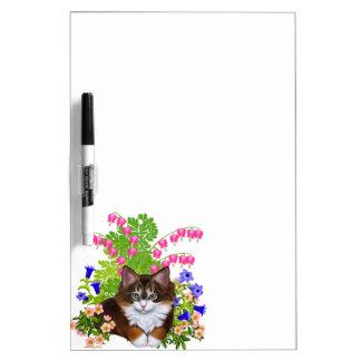 El gatito del Coon de Maine en flores seca al tabl Tableros Blancos