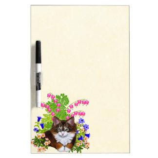 El gatito del Coon de Maine en flores seca al tabl Pizarras