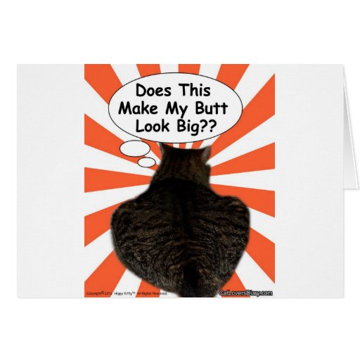 ¿El gatito del hippy hace esto hace mi mirada del  Tarjeta De Felicitación