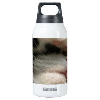 El gatito del smoking tiene un dolor de cabeza botella isotérmica de agua
