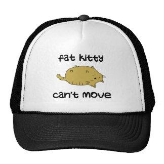El gatito gordo no puede moverse gorro