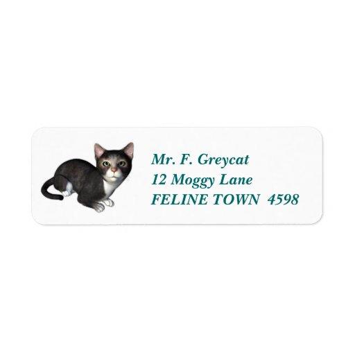 El gatito gris curioso etiqueta de remitente