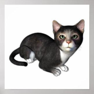 El gatito gris curioso impresiones
