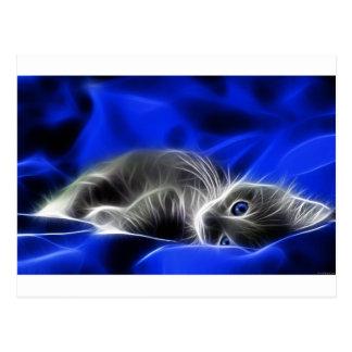 El gatito gris se despierta postal