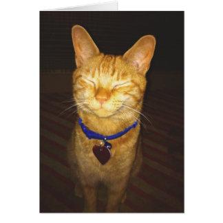 El gatito hace un cumpleaños del deseo tarjeta de felicitación