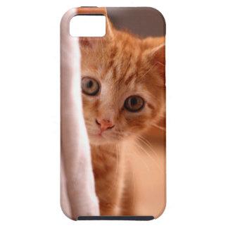 El gatito Hide'n va búsqueda iPhone 5 Fundas