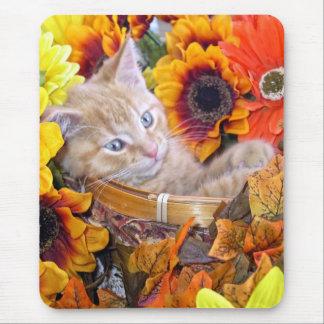 El gatito lindo del gato del gatito del jengibre, alfombrilla de ratones