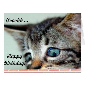 El gatito lindo grande de la tarjeta de cumpleaños