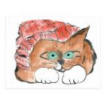 El gatito lleva un gorra de punto de la gorrita te postal