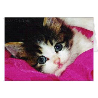 El gatito más lindo de los mundos felicitacion