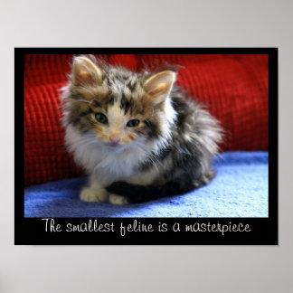 El gatito minúsculo del calicó es perfecto póster