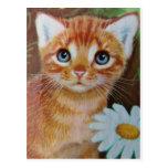 El gatito n florece II Postal