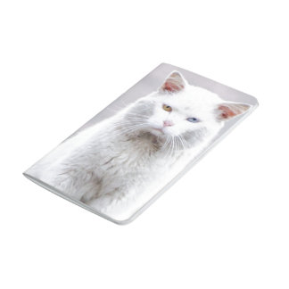 El gatito no se divierte cuaderno