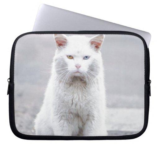El gatito no se divierte mangas portátiles