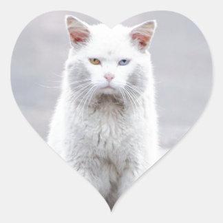 El gatito no se divierte calcomania de corazon