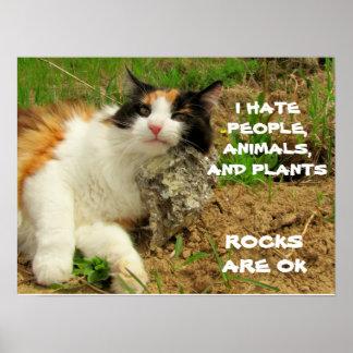 El gatito odia todo pero rocas posters