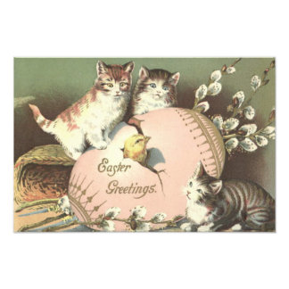El gatito Pascua del gato coloreó el polluelo pint Fotografias