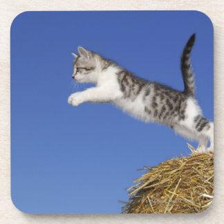El gatito que salta 2 posavasos de bebida